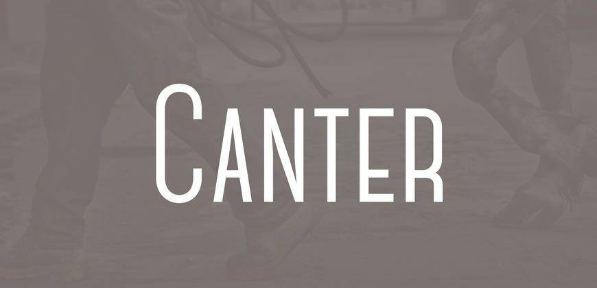 Canter free clean font typeface