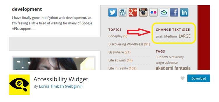 Accessibility Widget