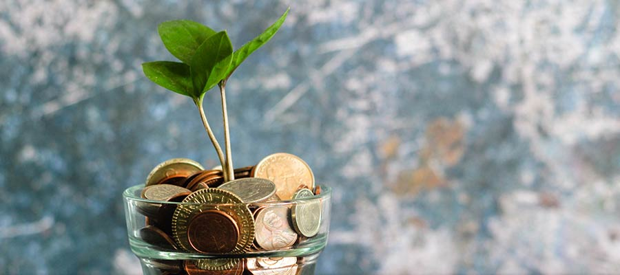 A potted plant surrounded by coins.